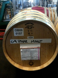 Waits-Mast 2009 Amber Ridge Pinot Noir: one of 8 barrels this year